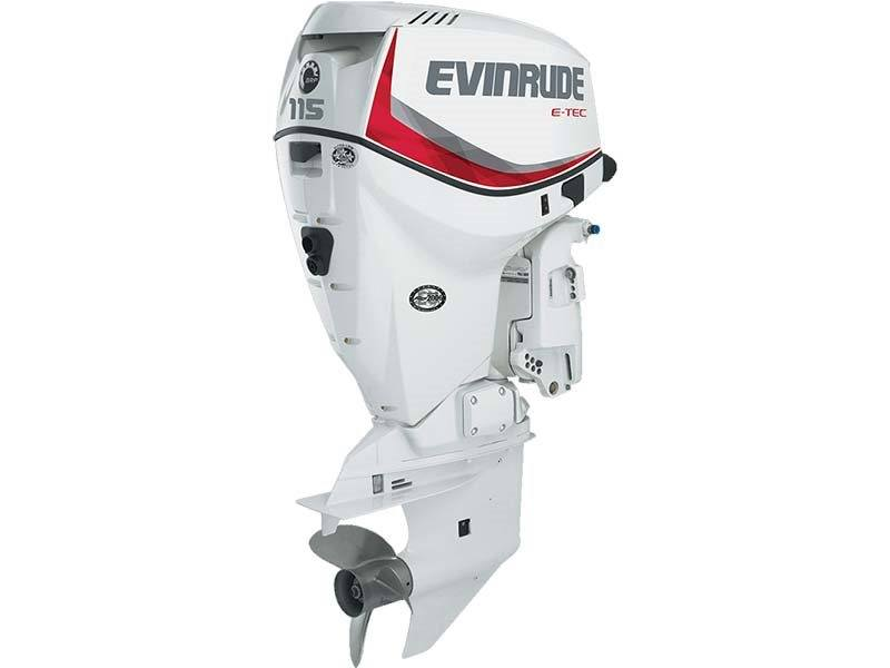 2018 Evinrude E115DPX in Black River Falls, Wisconsin