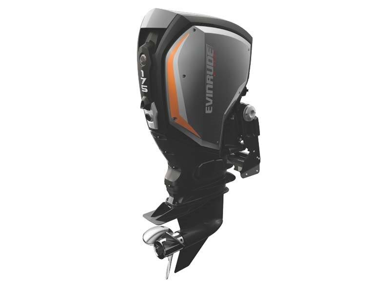 2018 Evinrude E-TEC G2 175 HP in Black River Falls, Wisconsin