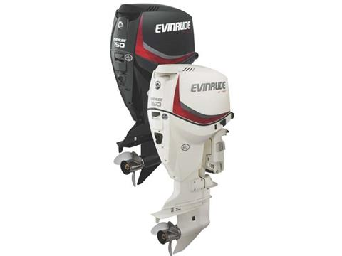 2018 Evinrude E150DGL in Black River Falls, Wisconsin