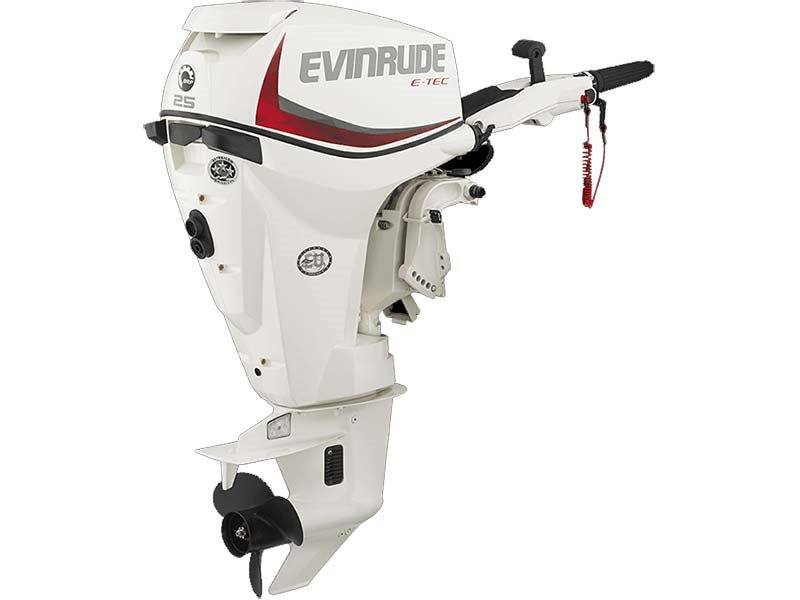 2018 Evinrude E-TEC 25 HP (E25DPSL) in Deerwood, Minnesota - Photo 1