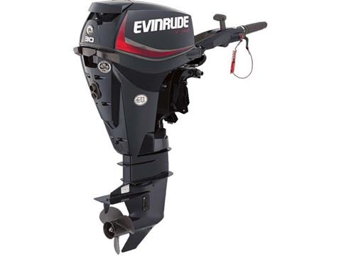 2018 Evinrude E-TEC 30 HP (E30DRGL) in Deerwood, Minnesota