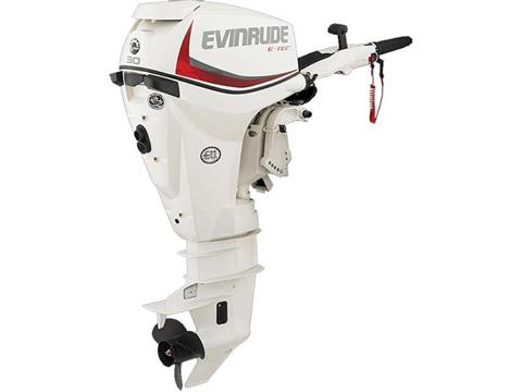 2018 Evinrude E-TEC 30 HP (E30DRSL) in Deerwood, Minnesota