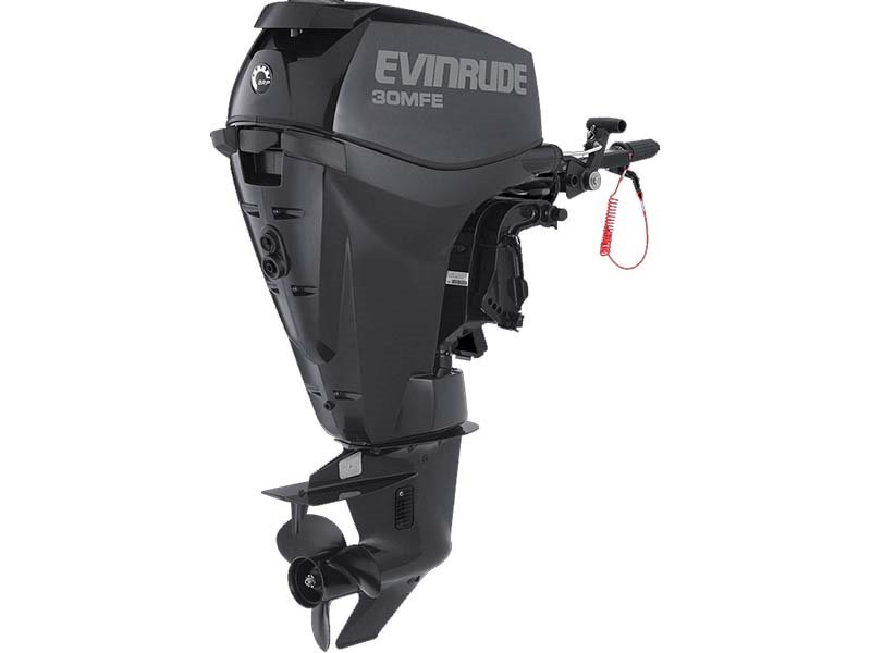 2018 Evinrude E30MRL in Black River Falls, Wisconsin