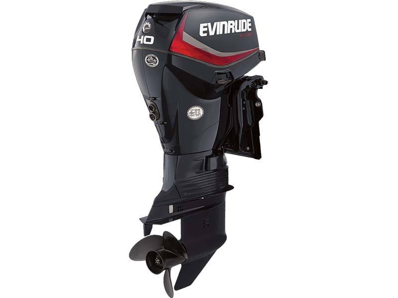 2018 Evinrude E40DRGL in Harrison, Michigan