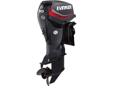 2018 Evinrude E-TEC 50 HP (E50DPGL) in Deerwood, Minnesota
