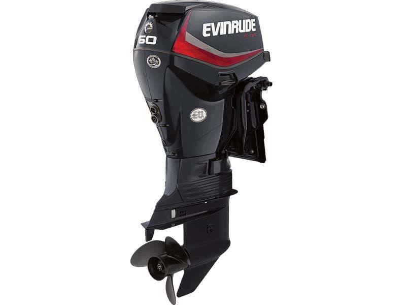 2018 Evinrude E60DPGL in Deerwood, Minnesota