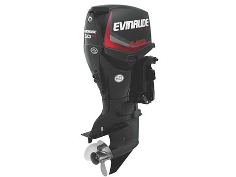 2018 Evinrude E-TEC 60 HP (E60HGX) in Deerwood, Minnesota