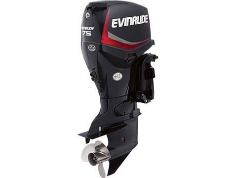 2018 Evinrude E-TEC 75 HP (E75DPGL) in Deerwood, Minnesota