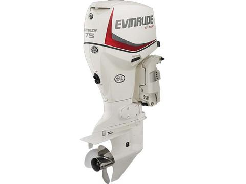 2018 Evinrude E-TEC 75 HP (E75DSL) in Deerwood, Minnesota