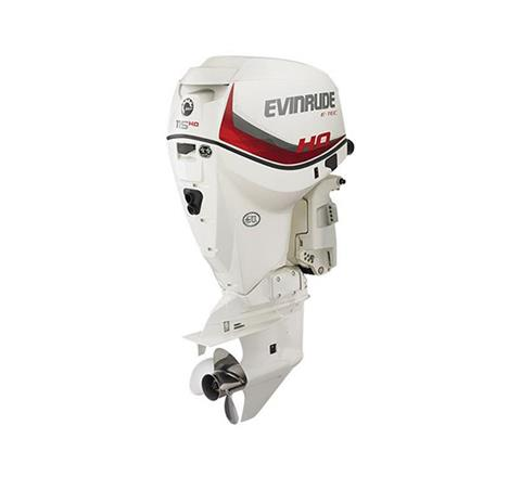 2019 Evinrude E-TEC 115 HO (A115SHL) in Harrison, Michigan