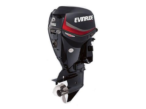 2019 Evinrude E-TEC Pontoon 115 HP (E115DGX) in Woodruff, Wisconsin