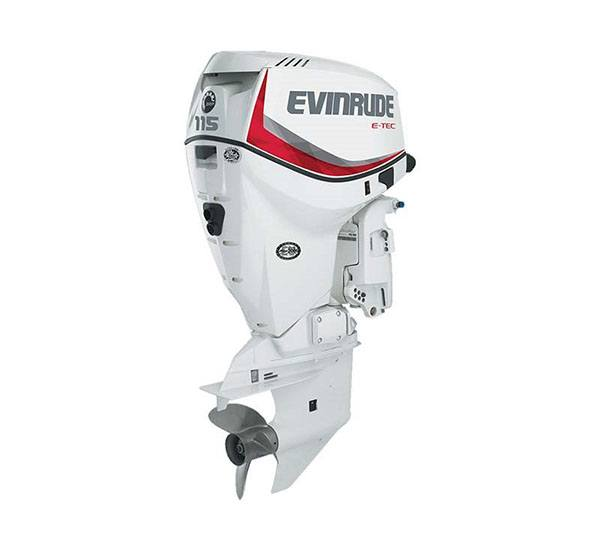 2019 Evinrude E-TEC 115 HP (E115DCX) in Black River Falls, Wisconsin