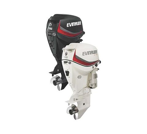 2019 Evinrude E-TEC 115 HP (E115DGX) in Woodruff, Wisconsin