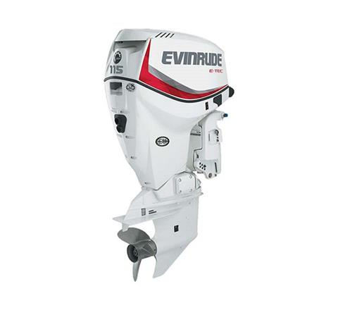 2019 Evinrude E-TEC 115 HP (E115DPX) in Woodruff, Wisconsin