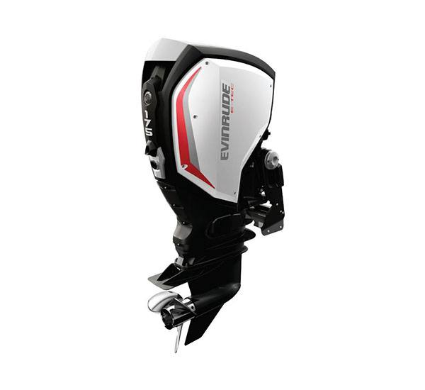 2019 Evinrude E-TEC G2 175 HP (C175XC) in Black River Falls, Wisconsin