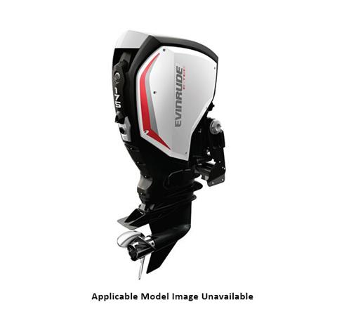 2019 Evinrude E-TEC G2 175 HP (C175PL) in Woodruff, Wisconsin
