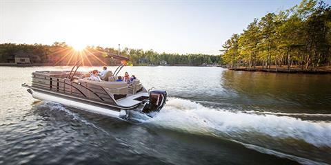 2019 Evinrude E-TEC G2 200 HP (C200FX) in Harrison, Michigan