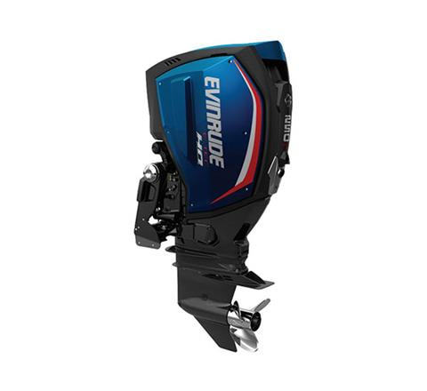 2019 Evinrude E-TEC G2 250 HO (E250LHO) in Harrison, Michigan