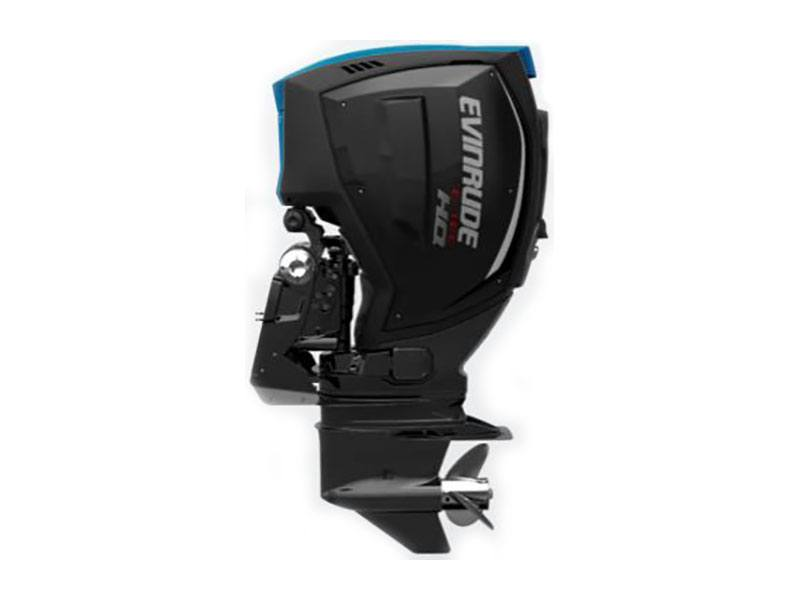 2019 Evinrude E-TEC G2 250 HO (H250LH) in Sparks, Nevada - Photo 1