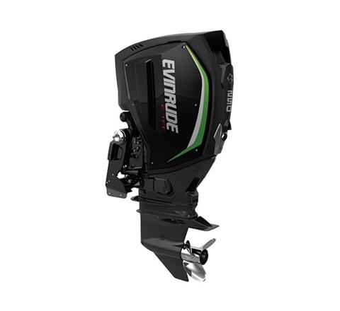 2019 Evinrude E-TEC G2 250 HP (E250Z) in Woodruff, Wisconsin