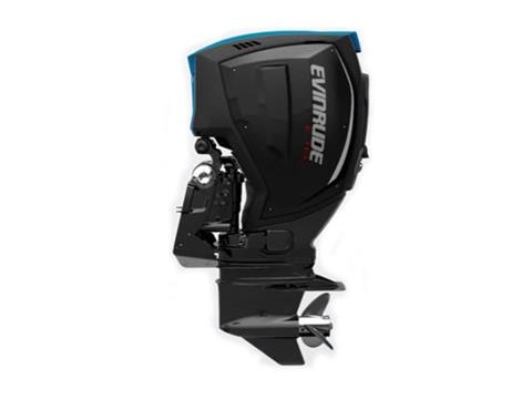 2019 Evinrude E-TEC G2 250 HP (H250X) in Woodruff, Wisconsin