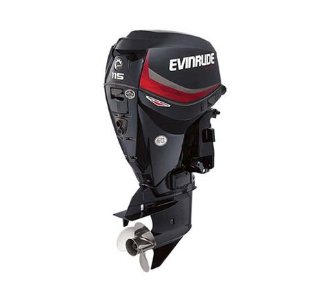 2019 Evinrude E-TEC Pontoon 115 HP (E115GNL) in Woodruff, Wisconsin