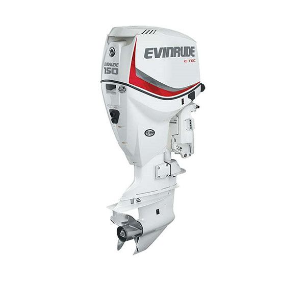 2019 Evinrude E-TEC 150 HP (E150DCX) in Black River Falls, Wisconsin
