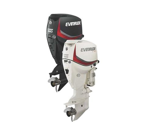 2019 Evinrude E-TEC 150 HP (E150DGX) in Woodruff, Wisconsin