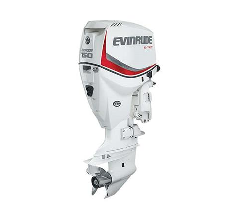2019 Evinrude E-TEC 150 HP (E150DPX) in Woodruff, Wisconsin