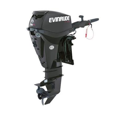 2019 Evinrude E-TEC 15 HO (E15HPGX) in Wilmington, Illinois