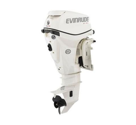 2019 Evinrude E-TEC 25 HO (E15HTSX) in Harrison, Michigan