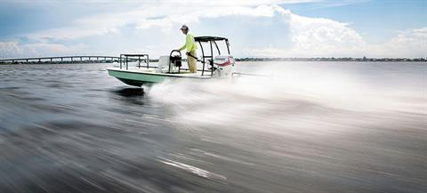 2019 Evinrude E-TEC 25 HP (E25DPGL) in Deerwood, Minnesota
