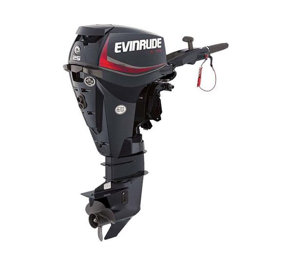 2019 Evinrude E-TEC 25 HP (E25DPGL) in Wilmington, Illinois