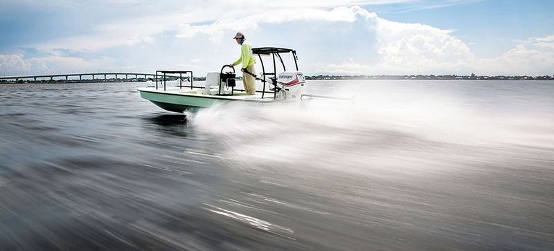 New 2019 Evinrude E-TEC 25 HP (E25DPSL) Boat Engines in