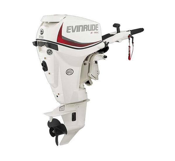 2019 Evinrude E-TEC 25 HP (E25DRS) in Wilmington, Illinois - Photo 1