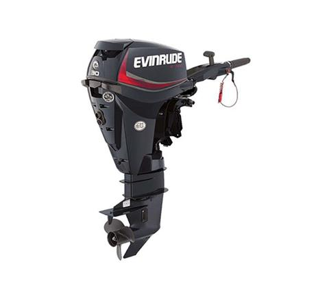2019 Evinrude E-TEC 30 HP (E30DRGL) in Harrison, Michigan