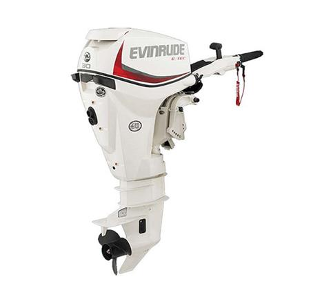 2019 Evinrude E-TEC 30 HP (E30DRSL) in Harrison, Michigan