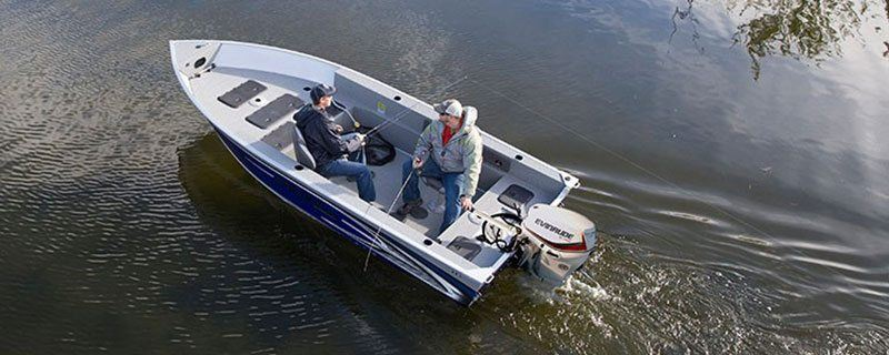 2019 Evinrude E-TEC 40 HP (E40DSL) in Deerwood, Minnesota