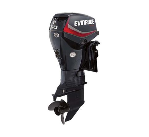 2019 Evinrude E-TEC 60 HP (E60DGTL) in Deerwood, Minnesota