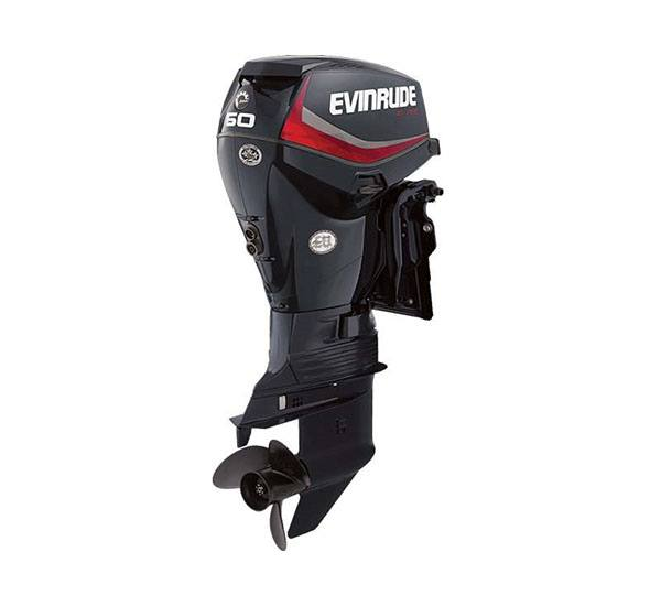 2019 Evinrude E-TEC 60 HP (E60DGTL) in Freeport, Florida