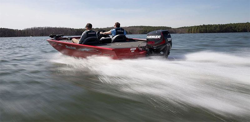 2019 Evinrude E-TEC 60 HP (E60DGTL) in Black River Falls, Wisconsin