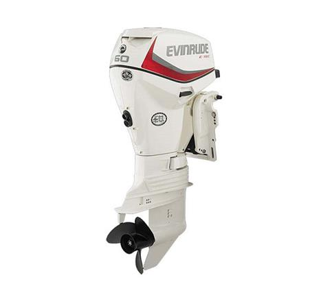 2019 Evinrude E-TEC 60 HP (E60DSL) in Wilmington, Illinois