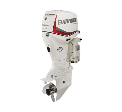 Evinrude E-TEC 75 HP (E75DSL) in Edgerton, Wisconsin