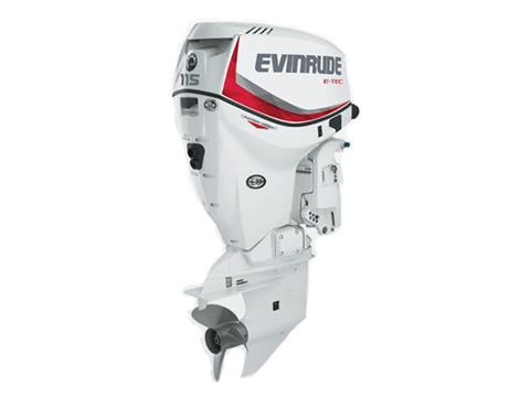 2019 Evinrude E-TEC Pontoon 115 HP (E115DCX) in Woodruff, Wisconsin