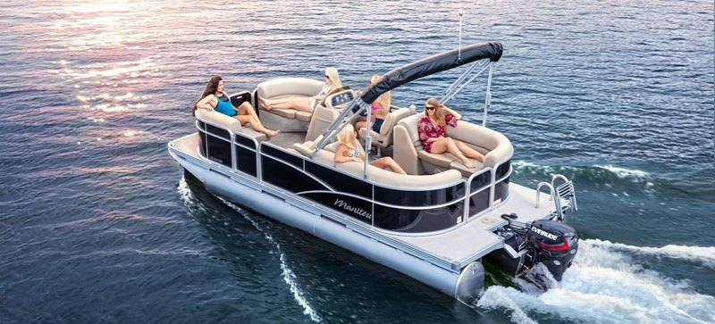 2020 Evinrude E-TEC Pontoon 90 HP in Harrison, Michigan - Photo 2