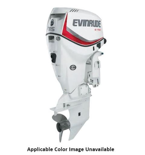 Evinrude E-TEC 115 HP (E115DGX) in Wilmington, Illinois