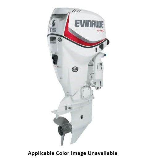 Evinrude E-TEC 115 HP (E115DGX) in Eastland, Texas - Photo 1