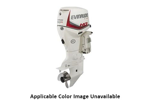 2020 Evinrude E-TEC 60 HO in Harrison, Michigan - Photo 1
