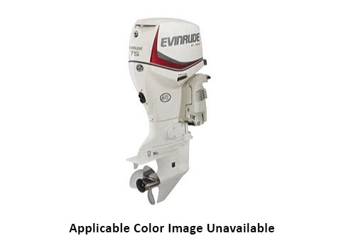 Evinrude E-TEC 75 HP in Rapid City, South Dakota