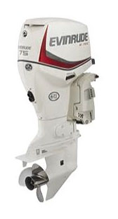 2020 Evinrude E-TEC 75 HP in Eastland, Texas - Photo 1